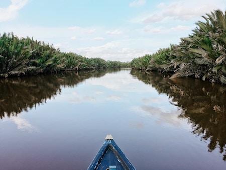 Kalimantan:Borneo «l'ile qui est mentionné dans le film Jumanji»