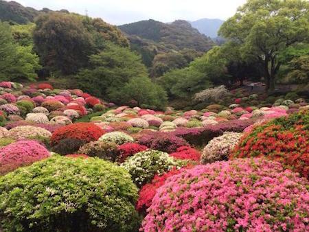 Les Paysages Mystérieux au Japon