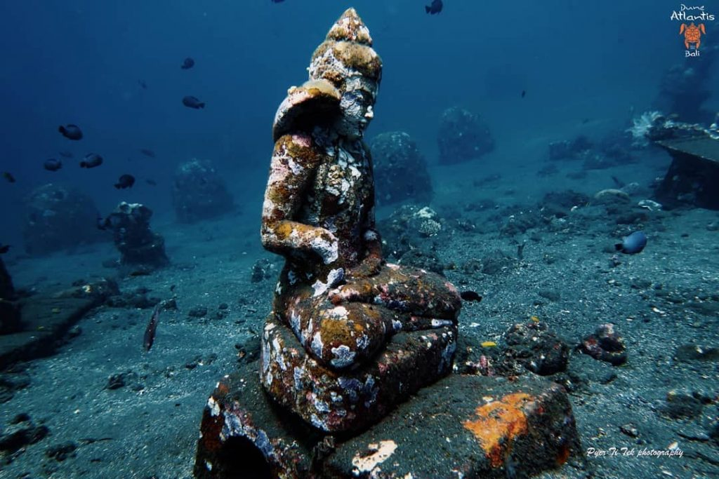 Tarif de Pongée Pour Une Destination De Reve: Bali