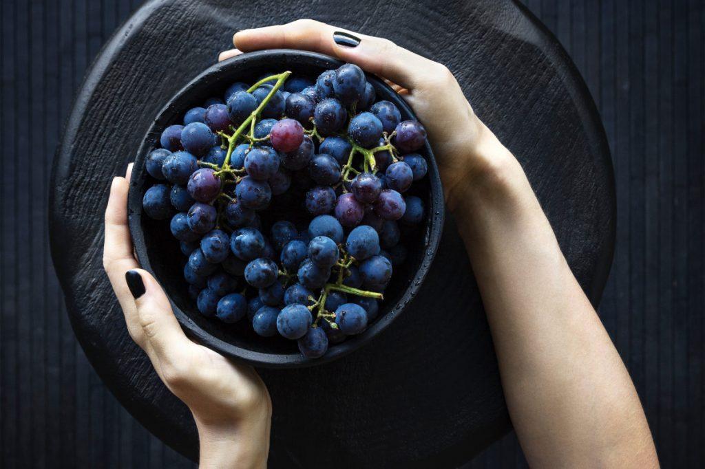 Ce qu'il faut savoir pour conserver son panier de fruits le plus longtemps possible