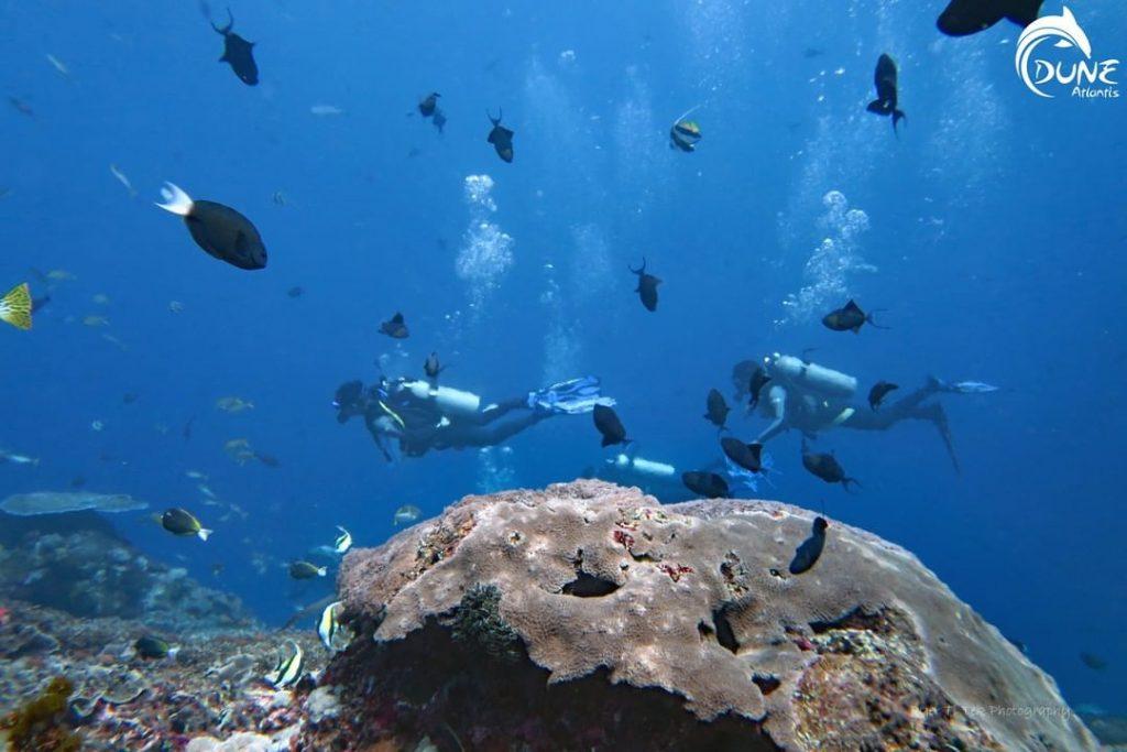 Faites-vous plaisir en faisant de la plongée à Bali