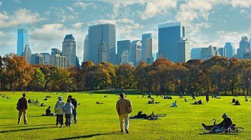 Se balader sur des beaux parcs dans le monde entier