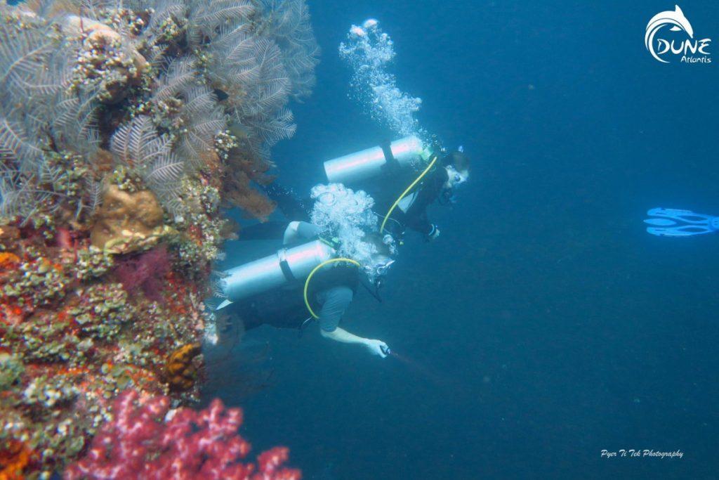 La Différence entre un plongeur sous-marin et un plongeur en eau libre